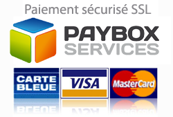 logo_paiement_paybox.png